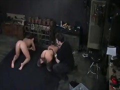 bdsm, tied, big boobs, tits