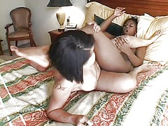 Two busty black lesbia... video