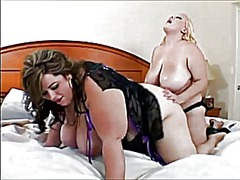 Bbw heavy tits preview