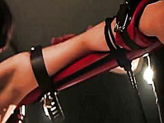 Bdsm skank pussy weights video