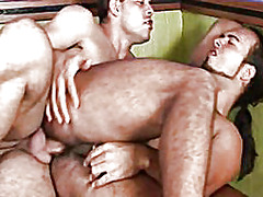 cock, lick, men, anal, gay, studs, ass,