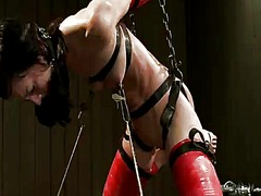 Yobt Movie:Elise graves hangs upside down...