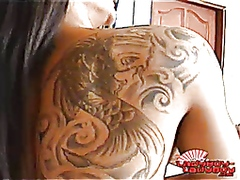 sweet tatoo shemale solo video