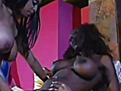 Big black tits kelly s... video