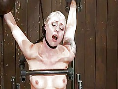 Blonde lorelei lee hav... video