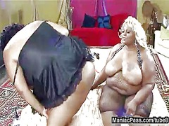 Tube8 Movie:Huge black & white girlfriends